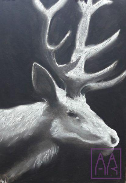jelen-czarno-bialy-rysunek-weglem-i-kreda-w-akademia-rysunku