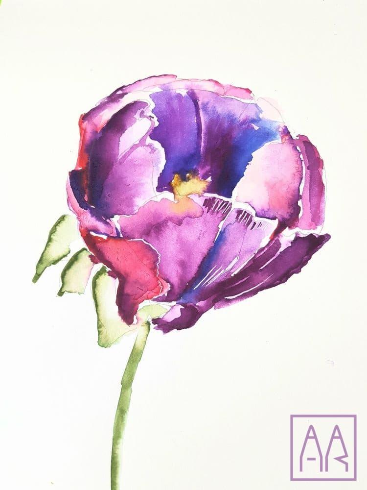 kwiat-irys-akwarela-zajecia-online-w-akademia-rysunku