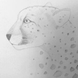 lamprt-szkic-ołówkiem-warsztaty-rysunkowe-online